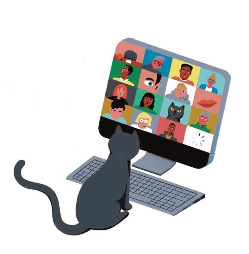 Illustration Zoom-Chat Katze