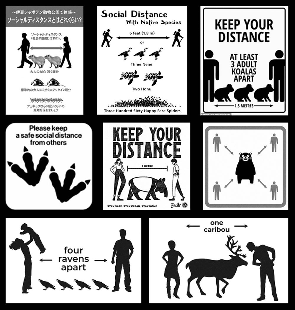 verschiedene Beispiele von Abstandsregeln mit Tieren als Maßstab