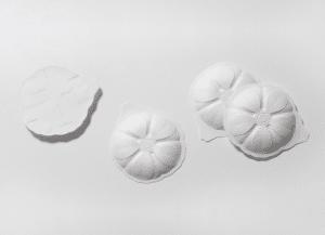 Nachhaltigkeit und Packaging: Plastikschälchen adé Aus der Kooperation des schwedischen Papierherstellers BillerudKorsnäs und des deutschen Prozess- und Verpackungstechnikunternehmens Syntegon entstanden die Shaped Paper Pods. Sie bestehen aus dem 3D-formbaren Material FibreForm und ersetzen hoffentlich ganz schnell Einzelportions- und Einwegverpackungen aus Kunststoff.