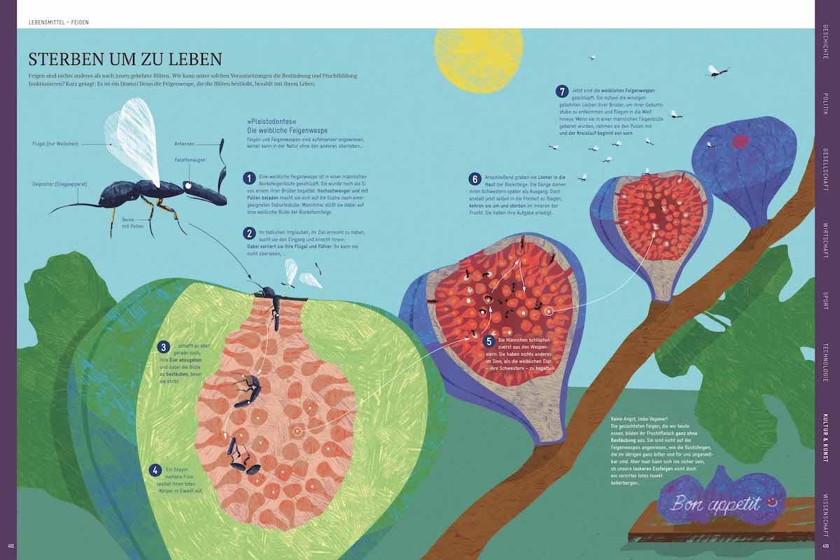 Infografik-Design Naturwissenschaften Jan Schwochow