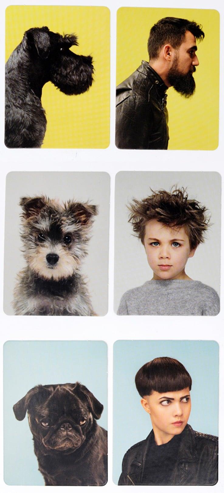 Hunde-Memory