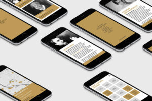 App-Design Stolpersteine Liana Gfrerer