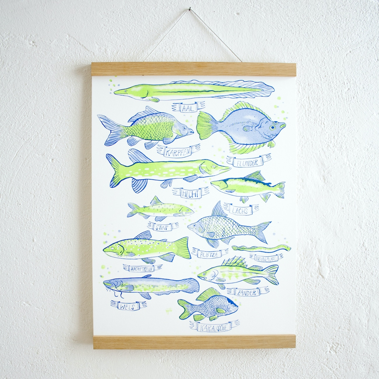 Geschenktipp: Fische-Plakat illustriert mit Posterleiste