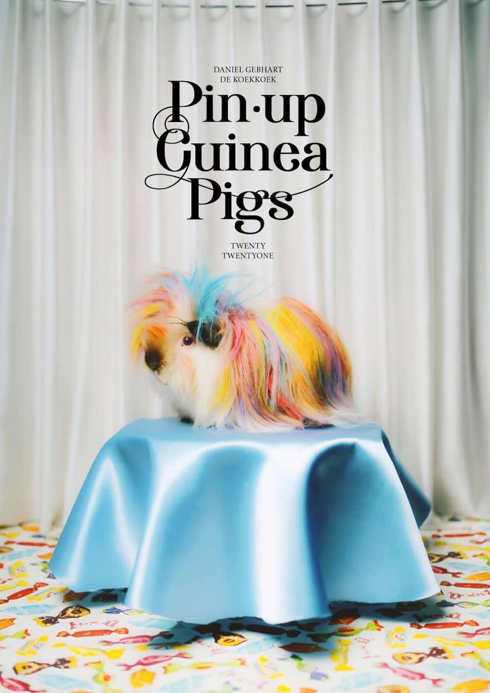 Witzige Wandkalender 2021 Tierkalender Meerschweinchen Fotograf KOEKKOEK Paul Gebhart
