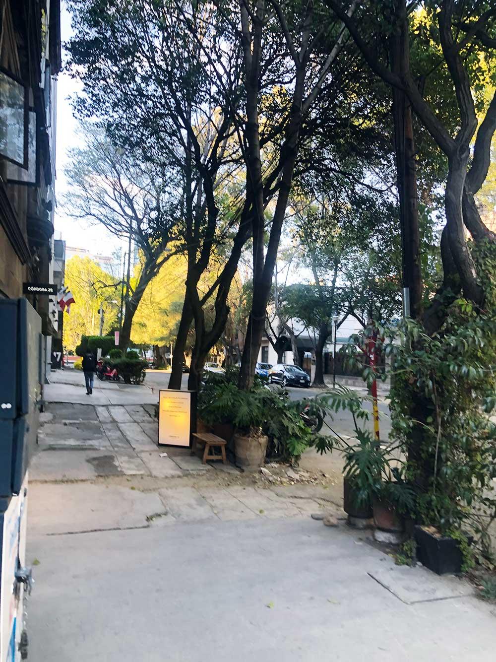 Mexico City Savvy