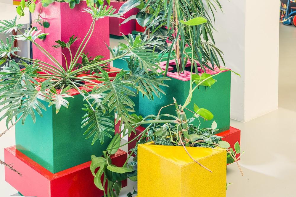 Pflanzeninstallation Office Miriam Köpf