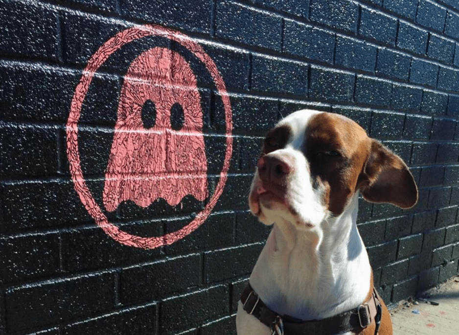 Teo the dog and Ghostly logo mural by Jacob Escobedo