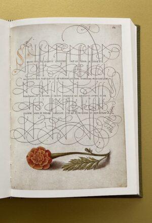 Extravagante Handschriften aus dem 16. Jahrhundert