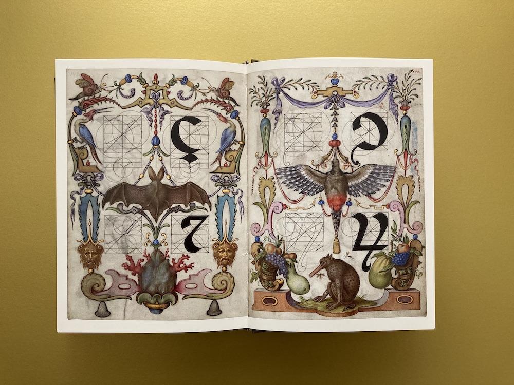 Schriften konstruieren 16. Jahrhundert
