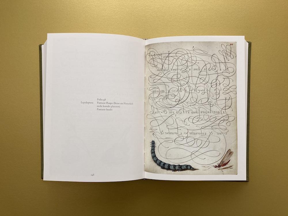 Schriftmusterbuch kalligrafische Schriften 16. Jahrhundert