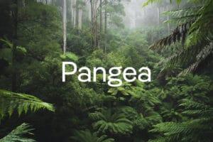 PangeaOpener