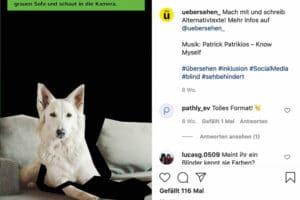 Social Media: Kampagne Übersehen von Katharina Sara-Lifke
