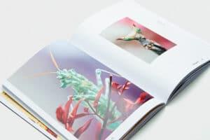 Editorial Design: Redlist von Magdalena Schmid und Jonas Rosenwirth