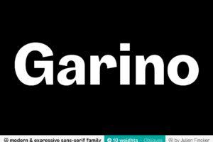 01_GARINO_Cover_1