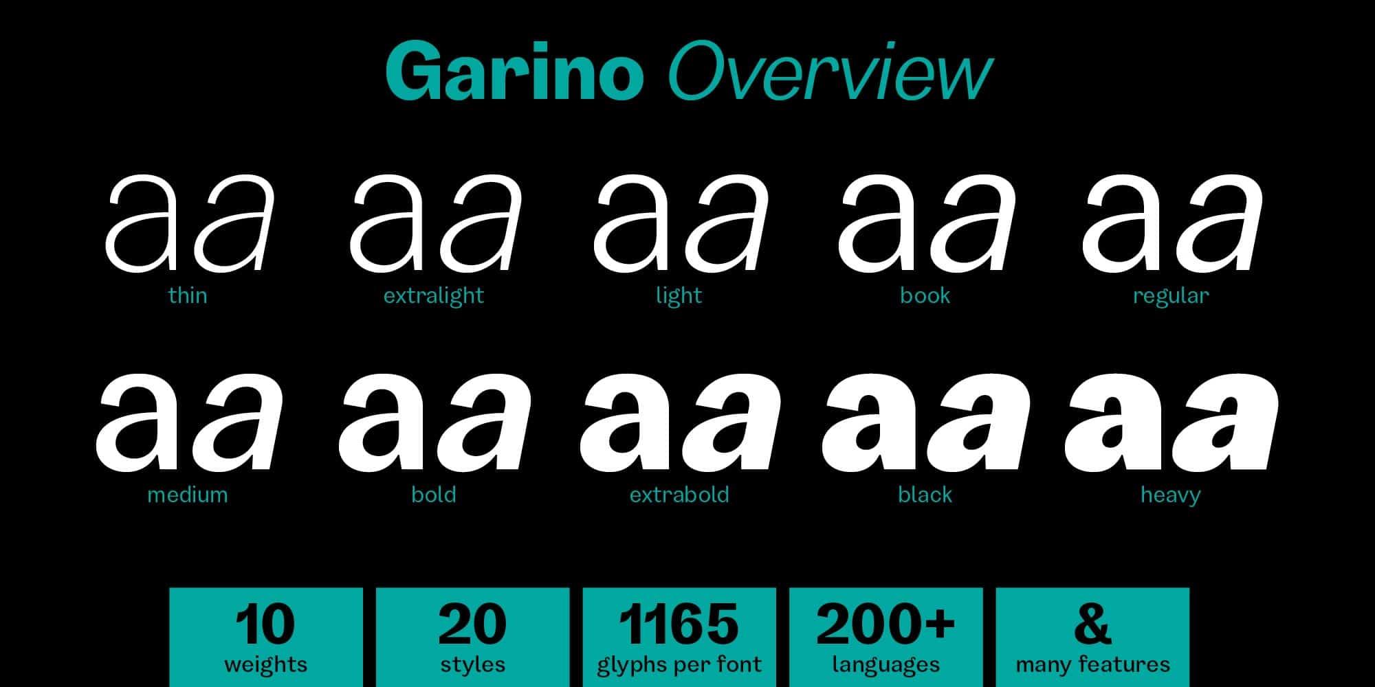 03_GARINO_Overview