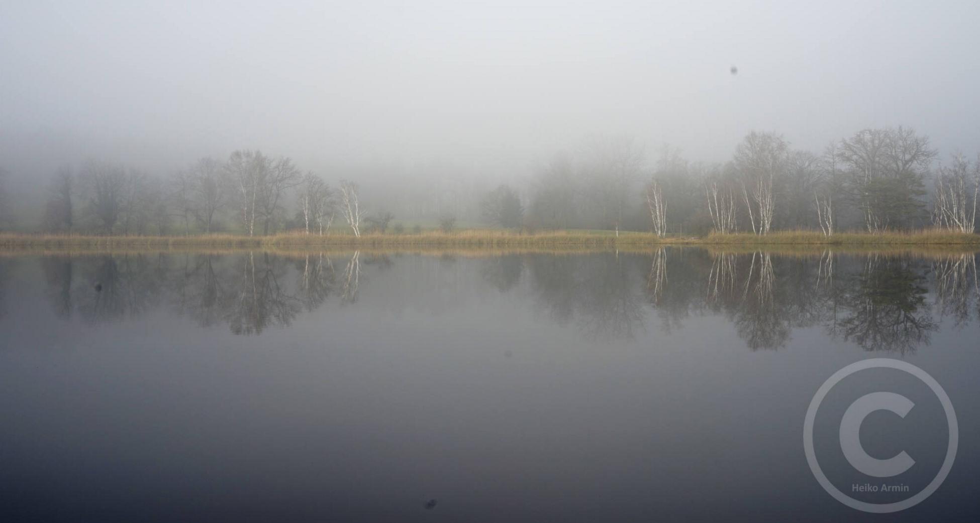 fog_project