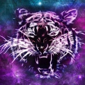 tiger_grrr